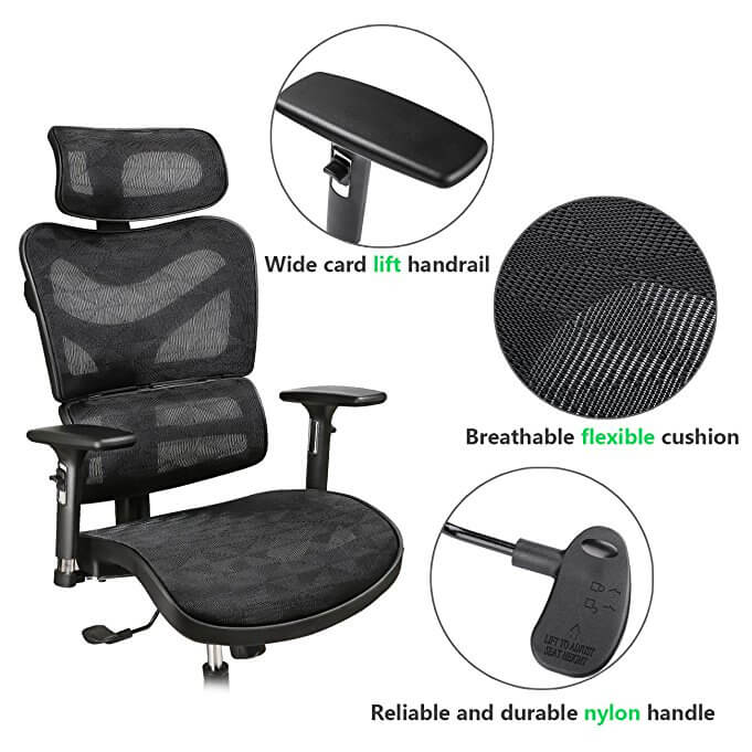 Argomax chair Features